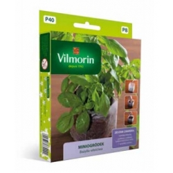 Mini Garden - Sweet basil - starter set for indoor cultivation - 650 seeds