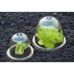 Mini üvegház - kupola - védi a növényeket a hirtelen, váratlan fagyoktól - 33 x 31 cm - 3 darab -