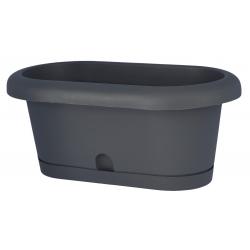 "Conjunto de caja de balcón ""Lotos"" - gris antracita - 60 cm -"