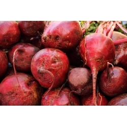 """Red beetroot """"Crimson"""" - COATED SEEDS"""