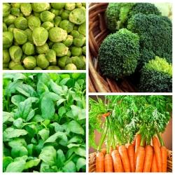 Köögiviljad, mis parandavad naha seisundit - 4 köögiviljataimi seemnete kogum -  - seemned