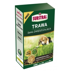 Universal lawn thickener seed selection - Substral - 1 kg