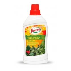Fertilizzante autunnale per piante sempreverdi - colorazione vivida in inverno - Florovit® - 1 l -