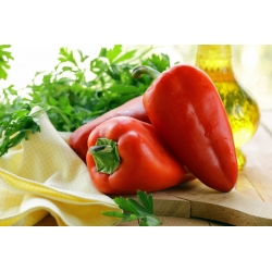 Sweet pepper 'Mercedes' - red, medium early variety with high vitamin C content