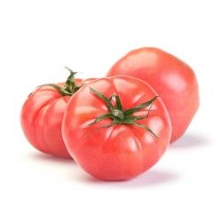 BIO Tomato 'Favorite' - certified organic seeds