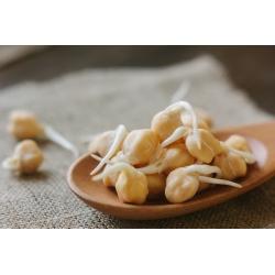 Hạt giống nảy mầm BIO - Chickpea - hạt hữu cơ được chứng nhận; garbanzo -