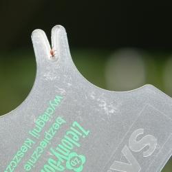 İnsanlar ve hayvanlar için kullanışlı kene çıkarma kartı - Zielony Dom -