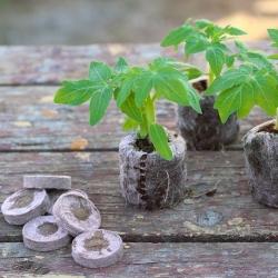Expandable peat pellets  33 mm - 36 pieces