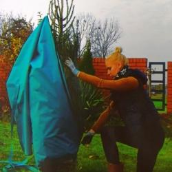 Turquoise Christmas tree case dengan zip -