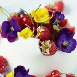 Söödavad lilled - suure lillekujulise aiaga lillekaitse - värvi sort - seemned