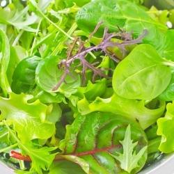Leaf Vegetable mix seeds - Fitness Mix