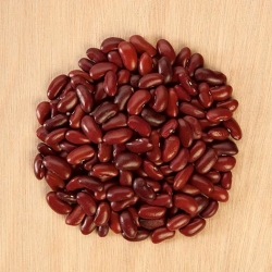 Dwarf bean  'Toska' - for dry seeds