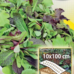 Fresh Leaves - Family mix - for cultivation in boxes, 10x100 cm mat