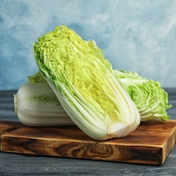 Napa cabbage 'Manoko' - early variety for cultivation under covers and in the open field