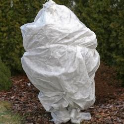Bulu musim dingin putih (agrotextile) - melindungi tanaman dari embun beku - 0,80 x 10,00 m -