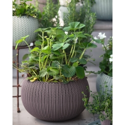 """Cozies M"" hanging plant pot - ø 36 cm - dark purple"