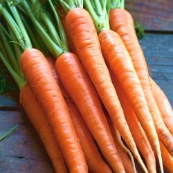 "Carrot ""Regulska"" - late, universal variety - 4250 seeds"