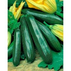 """Zucchini """"Cora F1""""; courgette"""