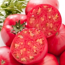 """Tomato """"Oxheart"""" - field, rapsberry variety - 10 g of seeds - 5000 seeds"""