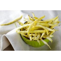 Harilik aeduba - Polka - 125 seemned - Phaseolus vulgaris L.