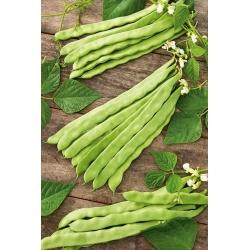 Harilik aeduba - Supermarconi - Phaseolus vulgaris L. - seemned