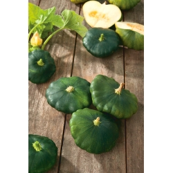 Patty Pan Squash Okra seeds - Cucurbita pepo - 75 seeds
