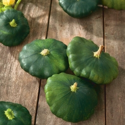 Patty Pan Squash Okra seeds - Cucurbita pepo - 75 seeds