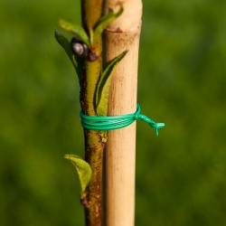 Lame, PVC-kattega aiatraat 30 mx 2 mm -