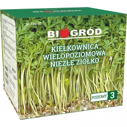 "Multilevel sprouter - ""Niezłe Ziółko"" (Some good herb)"