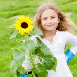 Playful Sunflowers for Children
