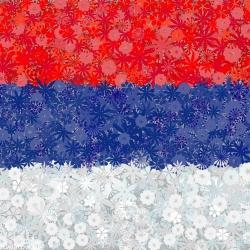Bendera Serbia - benih 3 varietas -  - biji