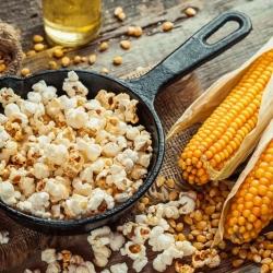 "Corn ""Plomyk"" - for popcorn - 100 seeds"