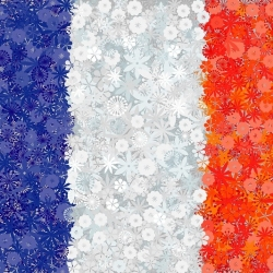 French Flag - seeds of 3 varieties
