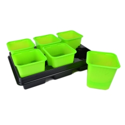Green 8 x 8 cm square nursery pot - 12 pieces + two trays