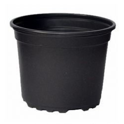 Round stiff nursery pot - 16 x 13.5 cm - 1 piece