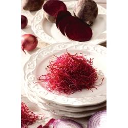 Hạt giống nảy mầm BIO - củ cải đỏ - Hạt giống hữu cơ được chứng nhận - Beta vulgaris