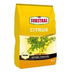 Tanah tanaman jeruk - Substral - 3 l -