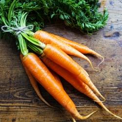 """Mrkva """"Amsterdam"""" - NANO-GRO - zvýšenie objemu úrody o 30% -"""