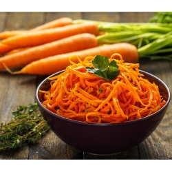 """Zanahoria """"Amsterdam"""" - NANO-GRO - aumenta el volumen de cosecha en un 30% -"""