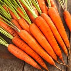 Carrot Finesse - pelbagai akhir -