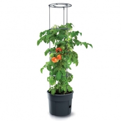 Vaiadega tomatikasvupott - tomatikasvataja - ø 39 cm -