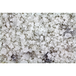 Ceļu sāls atledošanai - 25 kg -
