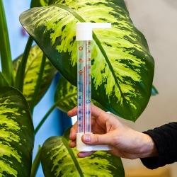 Valge läbipaistva skaalaga välistermomeeter - 230 x 26 mm -