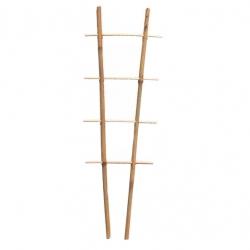 Bambusetaimede tugiredel S2 - 60 cm -