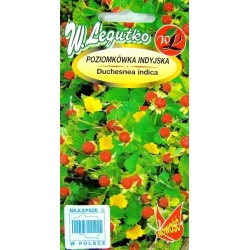 Mock Strawberry, Indian Strawberry seeds - Duchesnea indica - 250 seeds