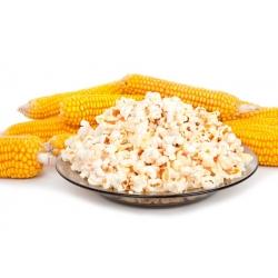 Popcorn seeds - Zea masy ssp.everta - 70 seeds