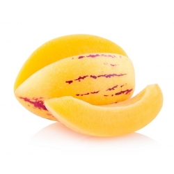 Melón de árbol - 11 semillas - Solanum muricatum