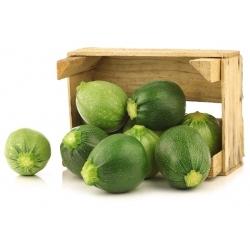 Zucchini Di Nizza seeds - Cucurbita pepo - 27 seeds