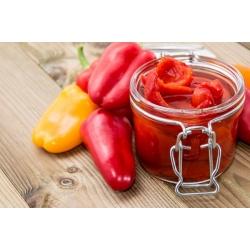 Sweet Pepper Roberta seeds - Capsicum annuum - 24 seeds