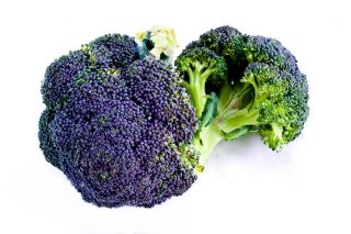 Broccoli Miranda seeds - Brassica oleracea - 300 seeds
